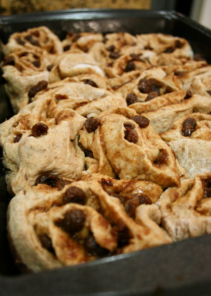 Cinnamon Raisin Rolls_25_cropped