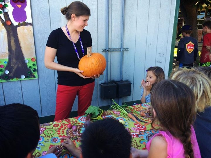 Teaching the kids about seeds! What do you find in the inside of a pumpkin?