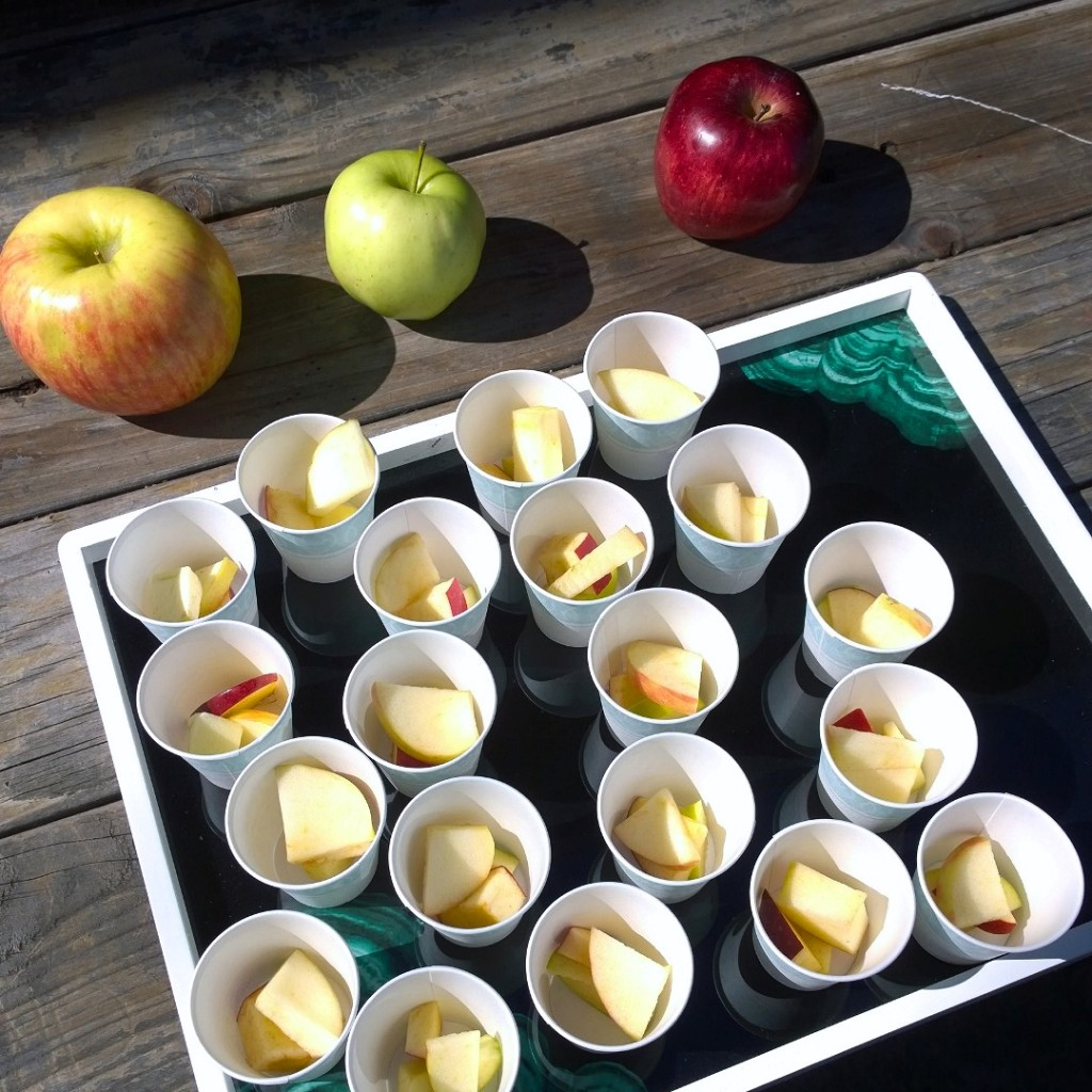 Apple tasting: Honeycrisp, Golden Delicious and Red Delicious! The kids voted the HC was the best :)