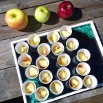 apple tasting 2